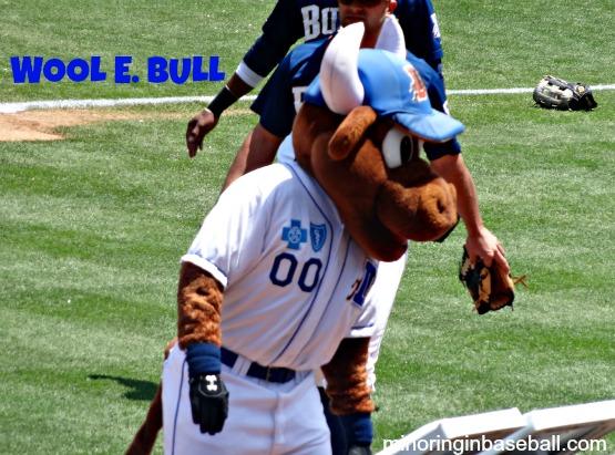 bulls8